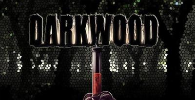 В продажу поступил ужастик Darkwood