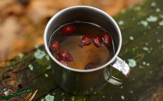 Чай из шиповника в The Long Dark
