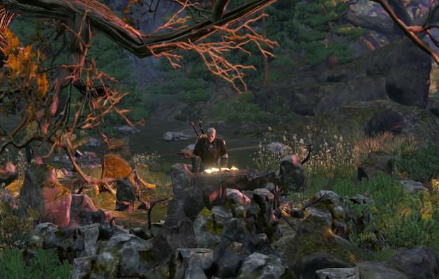 Волчьи сердца на алтаре в Ведьмак 3