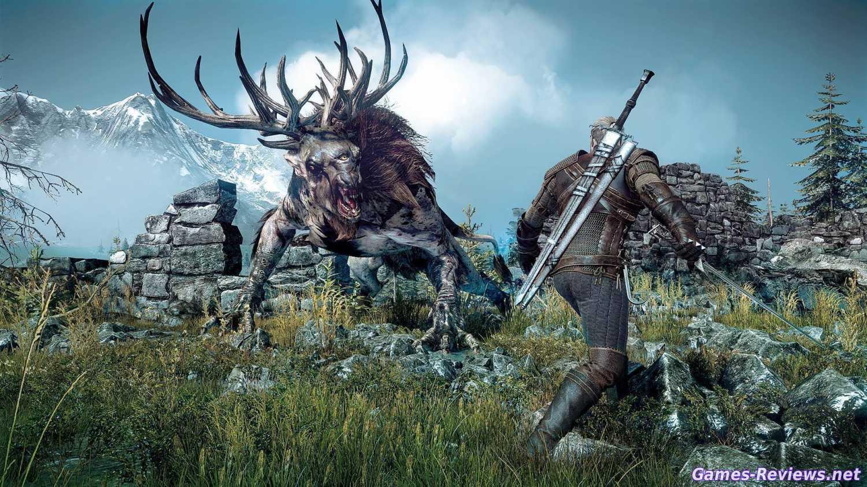 Картинка из игры Ведьмак 3 дикая охота